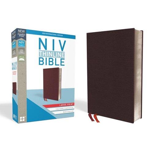 BIBLE NIV THINLINE LARGE PRINT BURGUNDY THUMB INDEX
