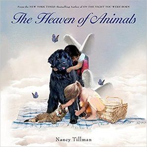 TILLMAN, NANCY HEAVEN OF ANIMALS by NANCY TILLMAN