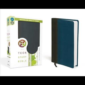 RICHARDS, LAWRENCE & SUE NIV, Teen Study Bible (GRAPHITE/BLUE)