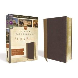 Cultural Backgrounds Study Bible NRSV New Revised Standard