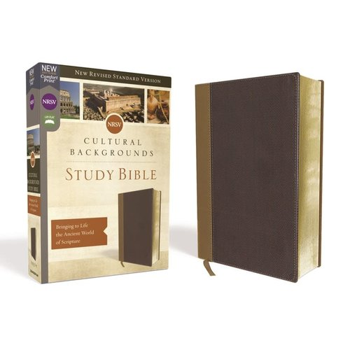 CULTURAL BACKGROUNDS STUDY BIBLE - NEW REVISED STANDARD