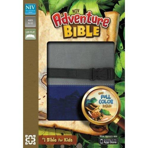 NIV, Adventure Bible,  Gray/Blue, Full Color