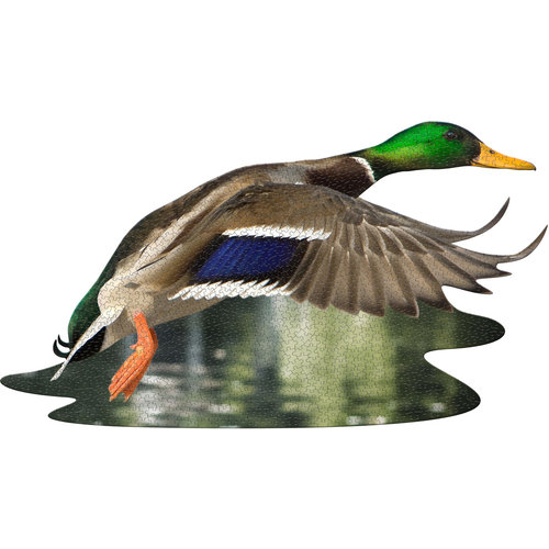 MADD CAPP 1000 Piece Puzzle I AM DUCK