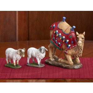 Three Kings Gifts Kneeling Camel and Two Awassi Sheep for Real Life Nativity
