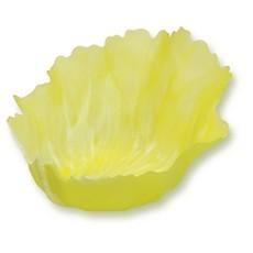 Vegecup Vegecup - Vegecups Lettuce