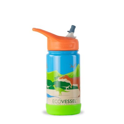 echo Drink - EcoVessel Frost - Insulated Stainless Bottle