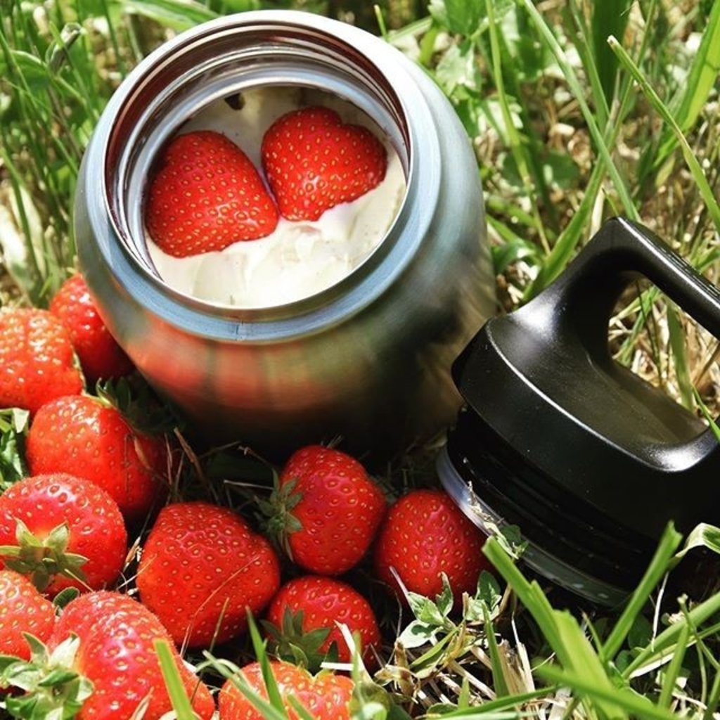 Sigg Sigg - Hot & Cold Insulated Thermos Food Jar