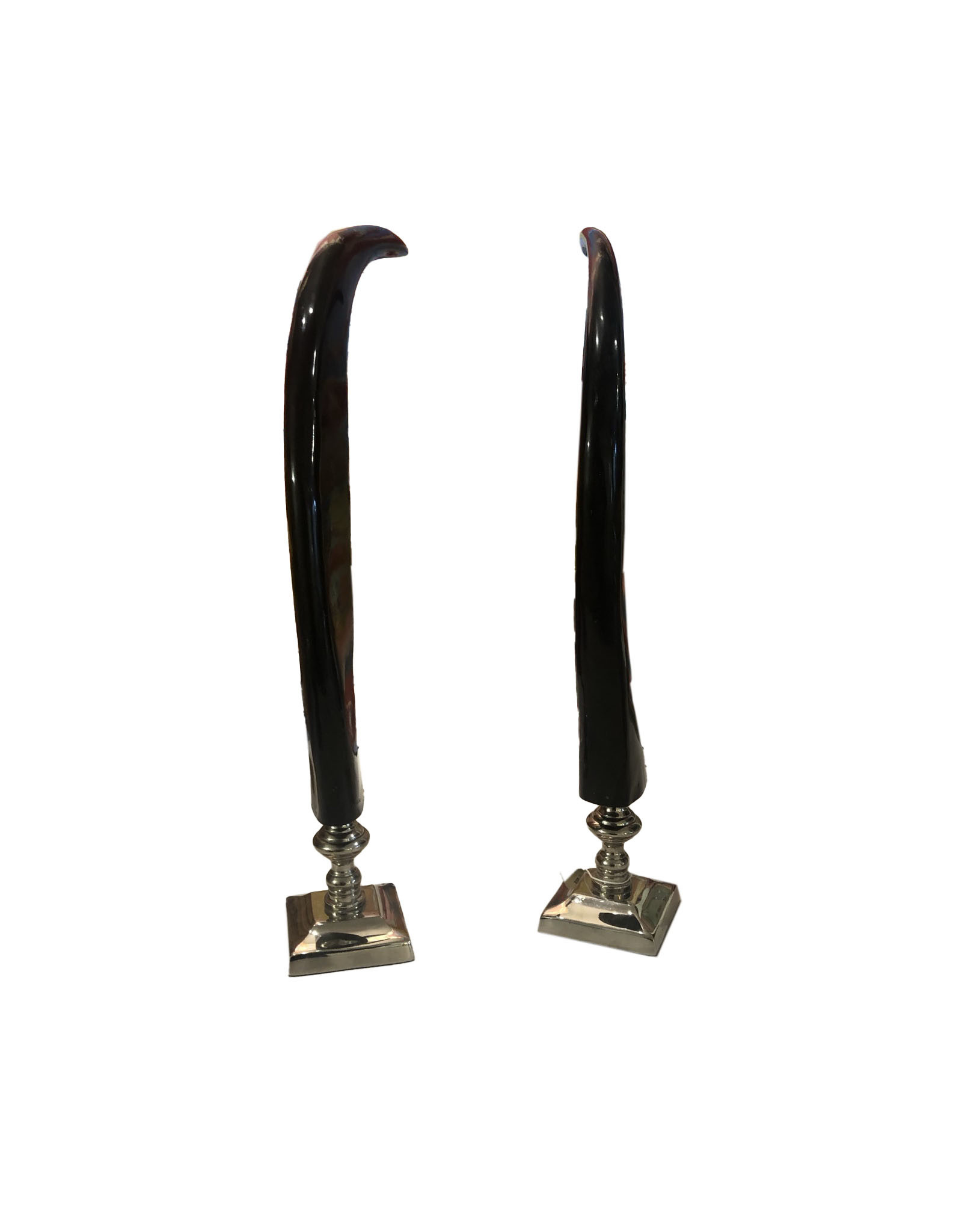 Pair of Horns on Silver Base