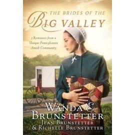 Brides of the Big Valley (Wanda Brunstetter), Paperback