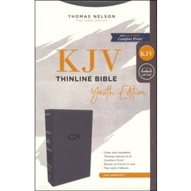 KJV Thinline Bible: Youth Edition, Gray Leathersoft