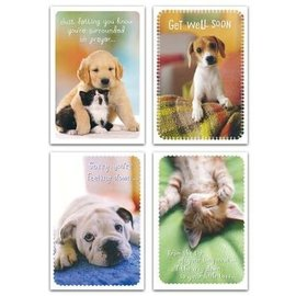 Boxed Cards - Get Well, Whiskers & Paws