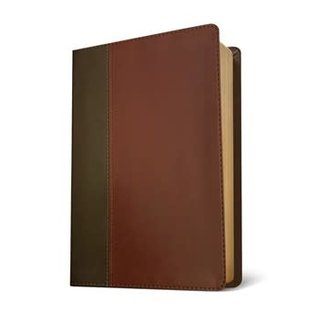 NLT Large Print Life Application Study Bible 3, Brown/Tan LeatherTouch