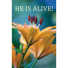Good News Bulk Tracts: He is Alive! (KJV)