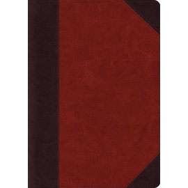 ESV Systematic Theology Study Bible, Brown TruTone