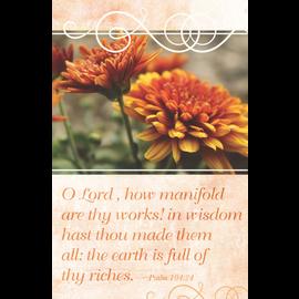 Bulletins: Earth is Full (Psalm 104:24 KJV)