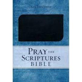 KJV Pray the Scriptures Bible, Black Duravella