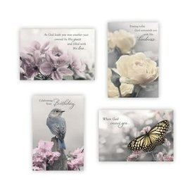 Boxed Cards - Birthday, Touch of Color