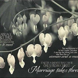 50% OFF! Plaque - Marriage Takes Three