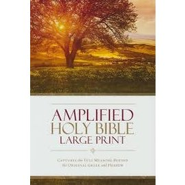 Amplified Large Print Bible, Hardcover