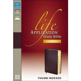 CLEARANCE NIV Large Print Life Application Study Bible, Burgundy Bonded Leather, Indexed
