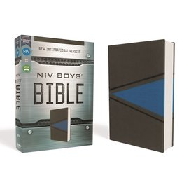 NIV Boys' Bible, Gray/Blue Leathersoft