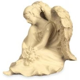 Amazing Angel - Serenity