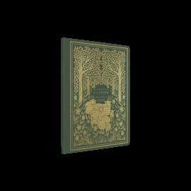 ESV Illuminated Scripture Journal: 1-2 Peter & Jude