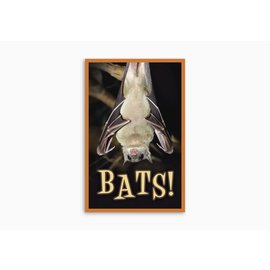 Good News Bulk Tracts: Bats (KJV)
