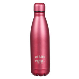 Stainless Steel Water Bottle - All Things are Possible, Pink