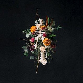 CD - Graves Into Gardens