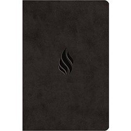 ESV Value Compact Bible, Midnight Flame Design TruTone