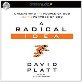 A Radical Idea (David Platt), Audiobook