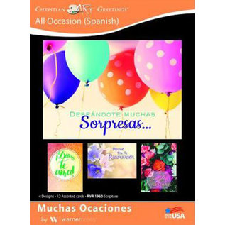 Boxed Cards - All Occasion (Spanish)