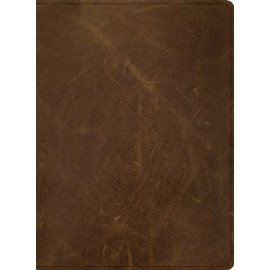 CSB Men of Character Bible, Brown Genuine Leather