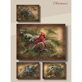 Boxed Christmas Cards - Winter Birds