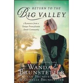 Return to the Big Valley (Wanda E. Brunstetter), Paperback