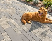 Decorative Stone Pavers