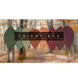 Pelotes & Cie Tricot-Box - Spécial Automne (Crochet)