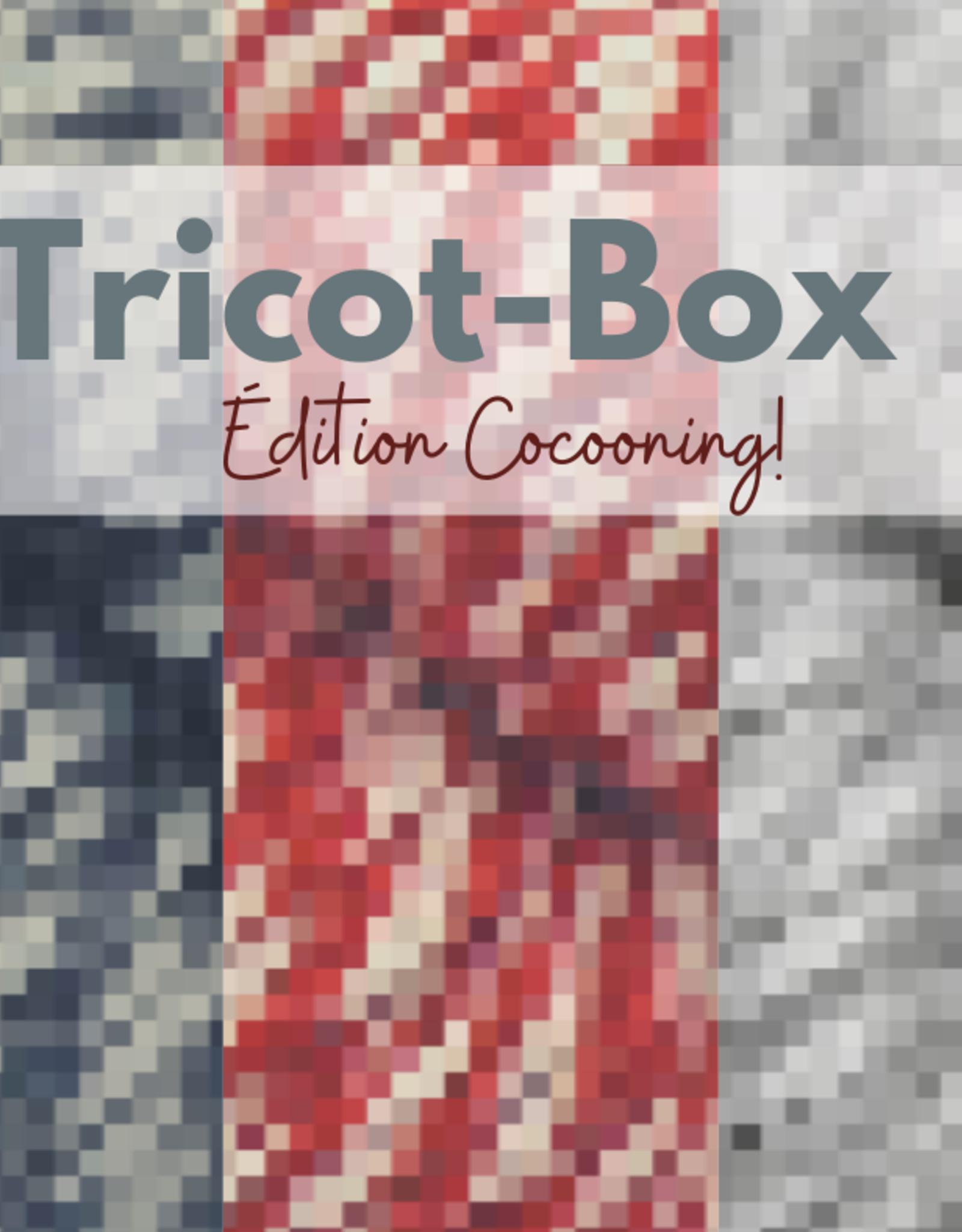 Pelotes & Cie Tricot-Box - Édition Cocooning (Régulière)