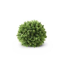 """8"""" Pineapple Grass Ball"""