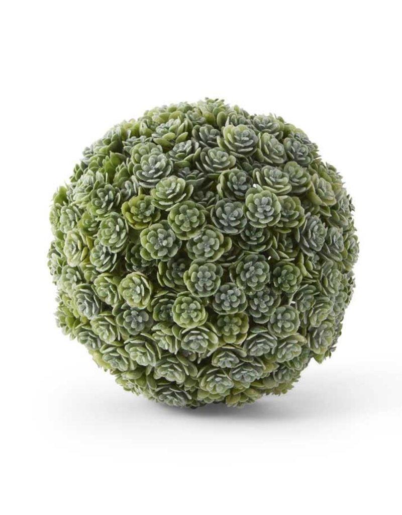 """5"""" Succulent Ball"""