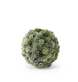 """4"""" Succulent Ball"""
