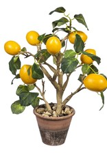 "15"" Lemon Tree in Stone Pot"
