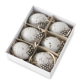 5.25 Inch Box of 6 Speckled Gray Eggs Mixed With Bird Feathers