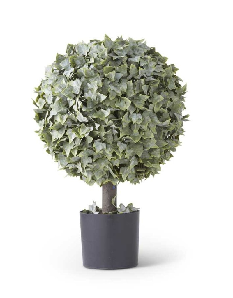 "25"" Powdered English Ivy Single Ball Topiary"