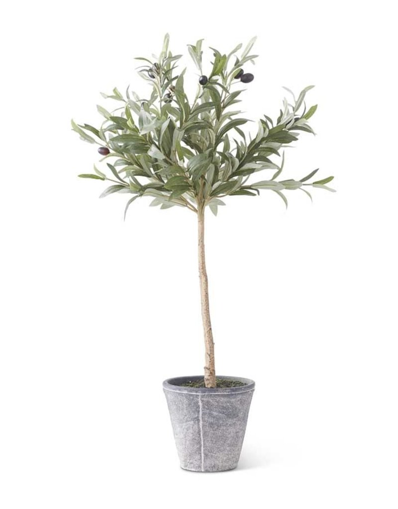 K & K Interiors 31 Inch Olive Tree w/Gray Wash Pot
