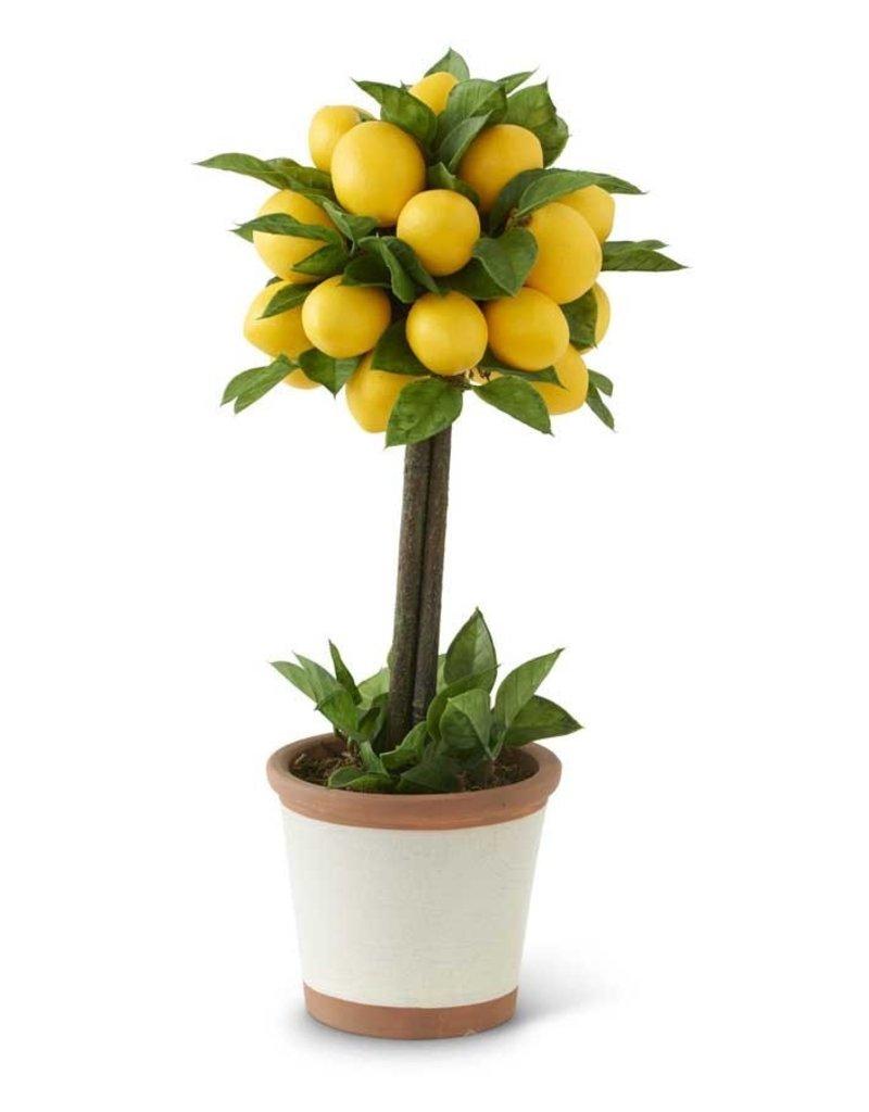 19 Inch Lemon & Foliage 1 Ball Topiary Tree in Ceramic Pot