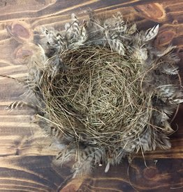 """12"""" Feather & Twig Nest with Eggs"""