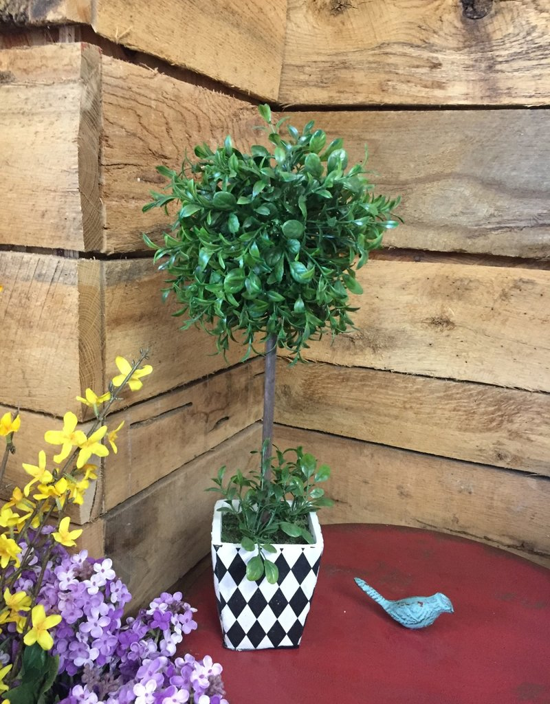 """18"""" Boxwood Ball Topiary in Harlequin Square Pot"""