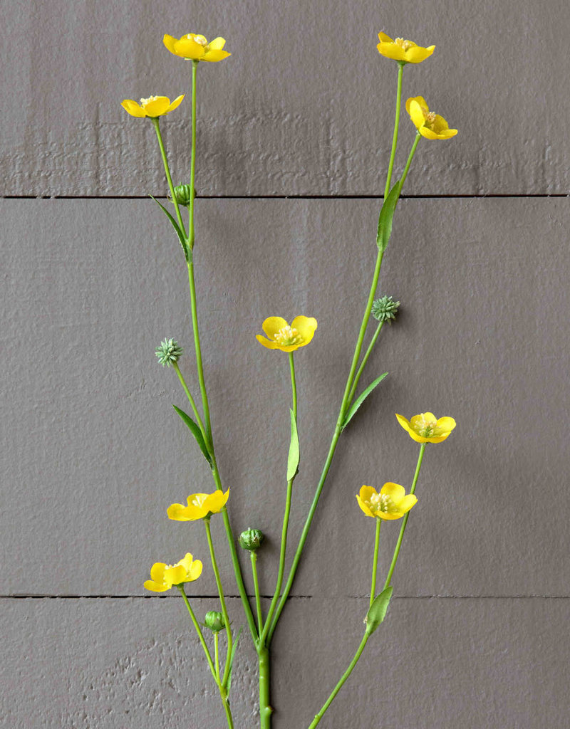 Prairie Flower Yellow